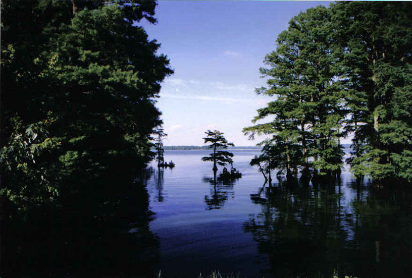 Camping – Visit Reelfoot Lake