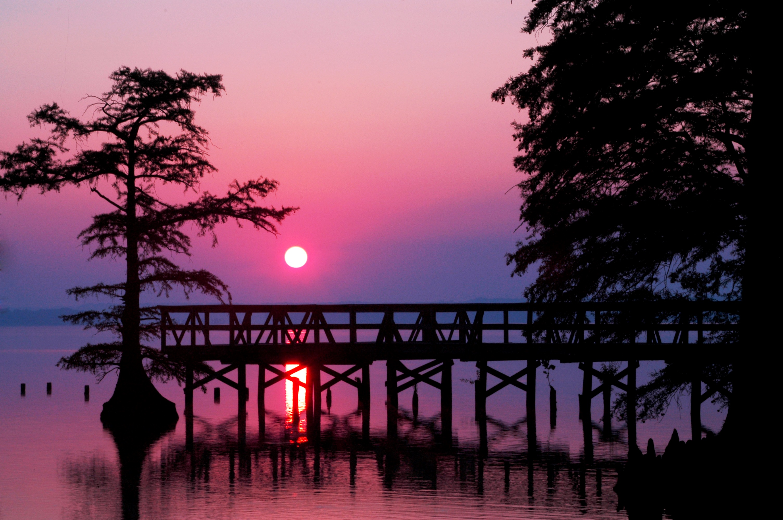 Visit Reelfoot Lake – Reelfoot Lake Tourism Council